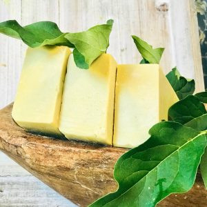 sandalwood-canine-shampoo